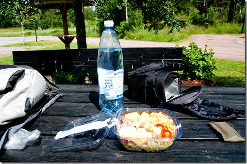 Veloce pranzo in un area di sosta svedese
